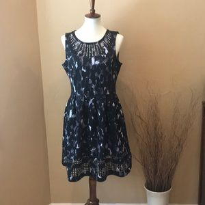 NWT, Cute black, gray and white dress!